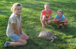 1Girls w Turtle